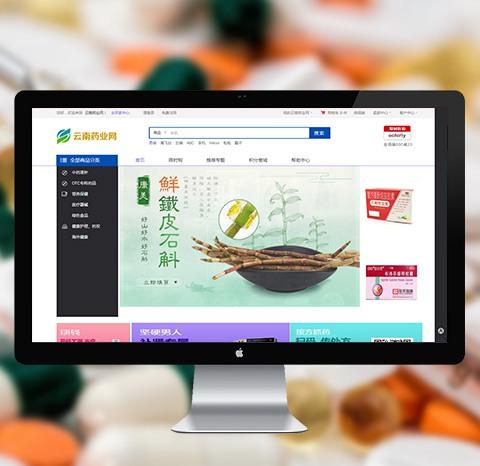 云南药业网